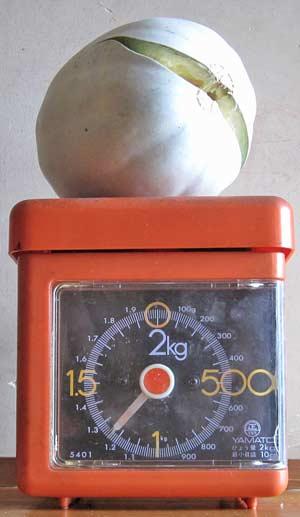 果実の重さ
