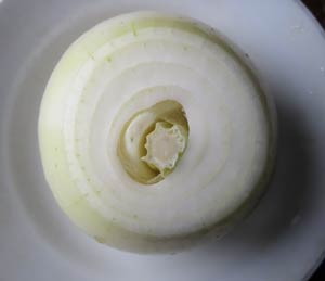 トウ立ちしたアトン玉ねぎの切断面