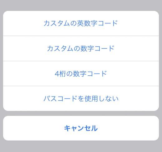 パスコードオプションの画面